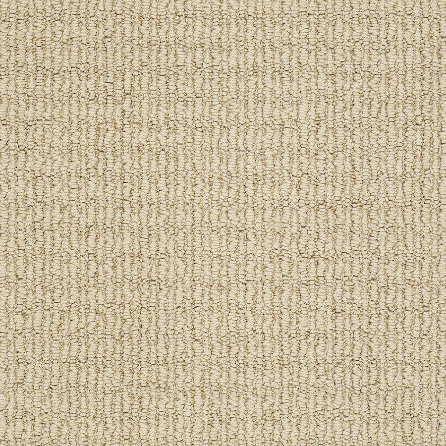 STAINMASTER TruSoft Uneqivocal 12-ft W x Cut-to-Length Sunkissed Berber/Loop Interior Carpet