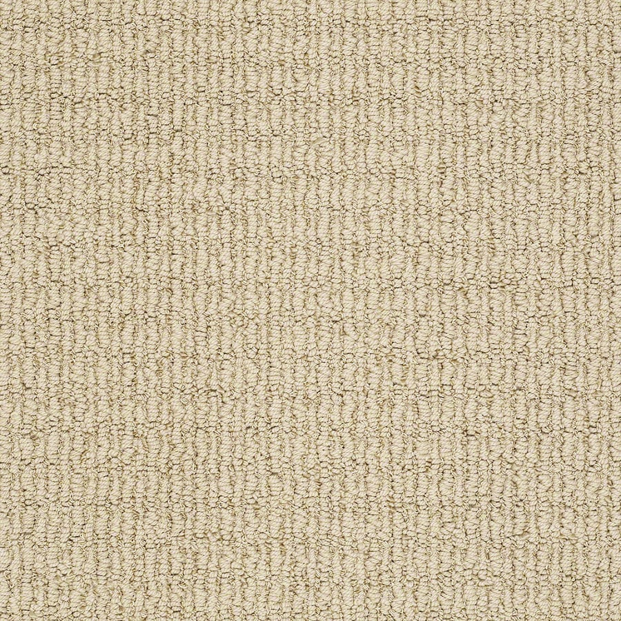 STAINMASTER TruSoft Uneqivocal Sunkissed Berber Indoor Carpet