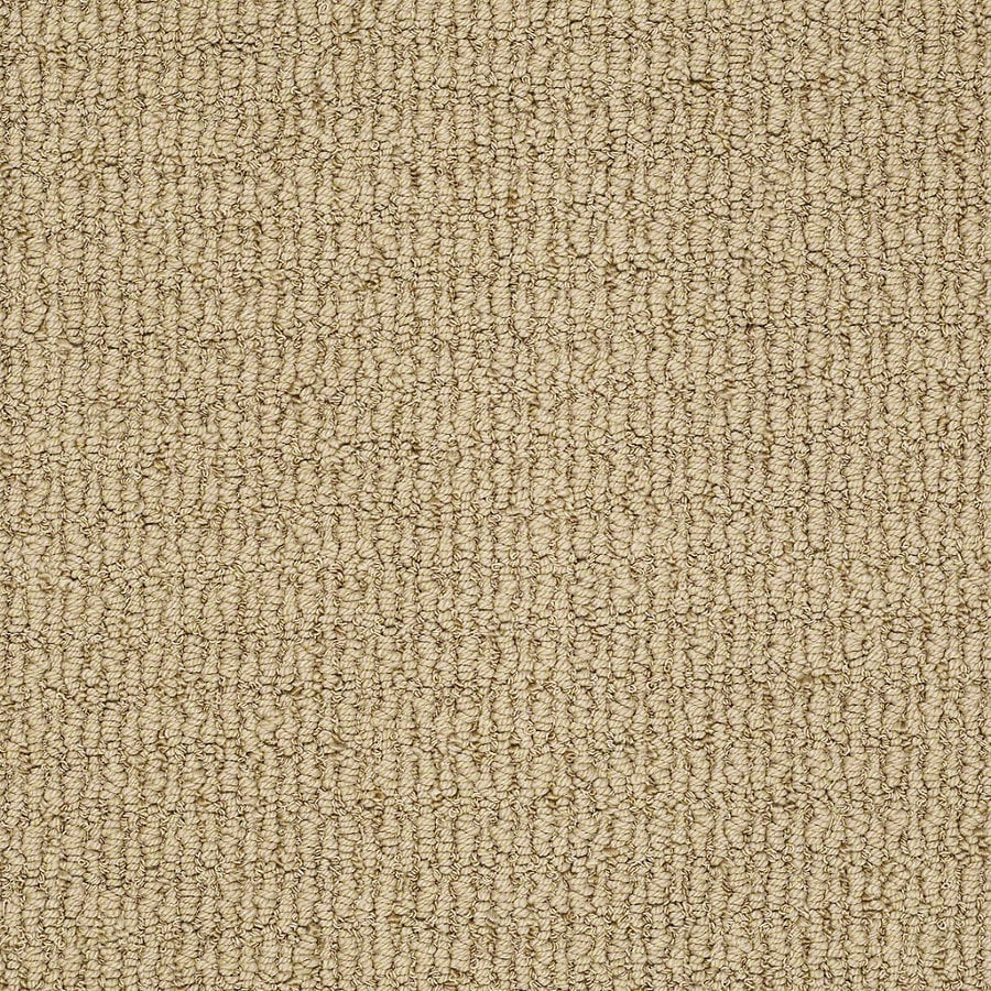STAINMASTER TruSoft Uneqivocal 12-ft W x Cut-to-Length Rose Gold Berber/Loop Interior Carpet