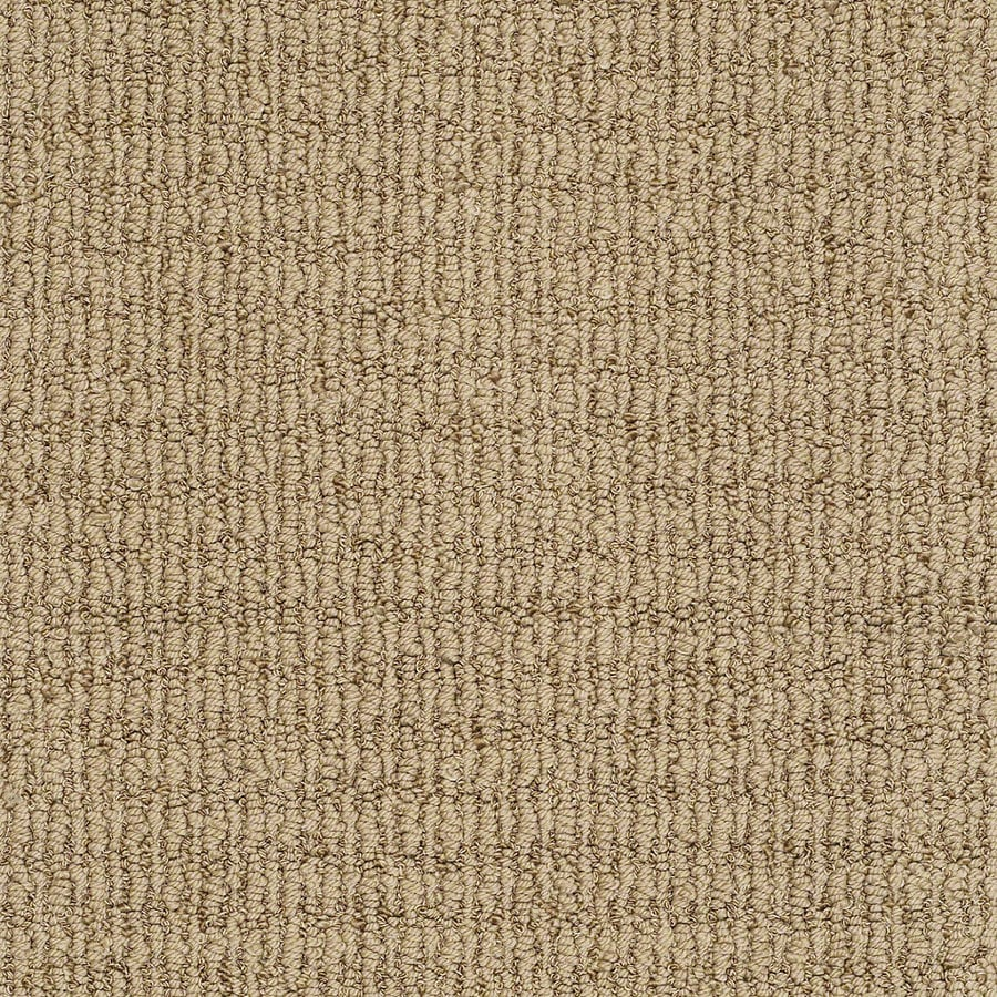 STAINMASTER TruSoft Uneqivocal 12-ft W x Cut-to-Length Maxi Tan Berber/Loop Interior Carpet