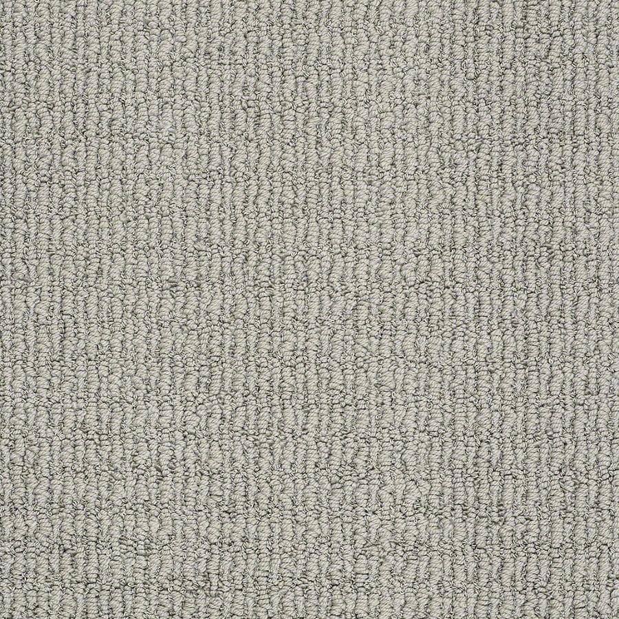 STAINMASTER TruSoft Uneqivocal 12-ft W Shale Berber/Loop Interior Carpet
