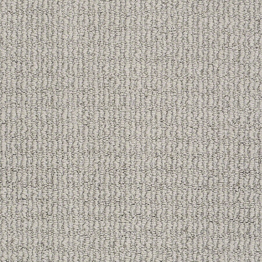STAINMASTER TruSoft Uneqivocal 12-ft W x Cut-to-Length Silver Mist Berber/Loop Interior Carpet