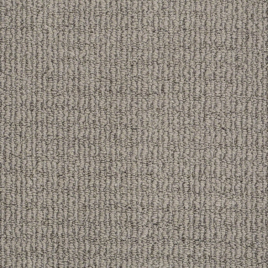 STAINMASTER TruSoft Uneqivocal 12-ft W x Cut-to-Length Moondust Berber/Loop Interior Carpet