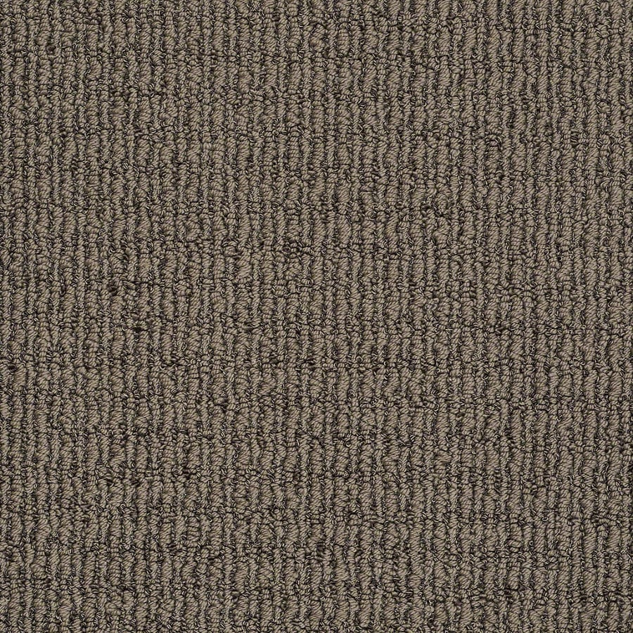 STAINMASTER TruSoft Uneqivocal Iron Age Berber/Loop Interior Carpet