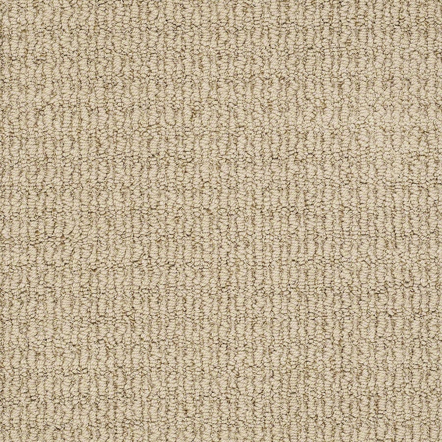STAINMASTER TruSoft Uneqivocal 12-ft W Canyon Berber/Loop Interior Carpet