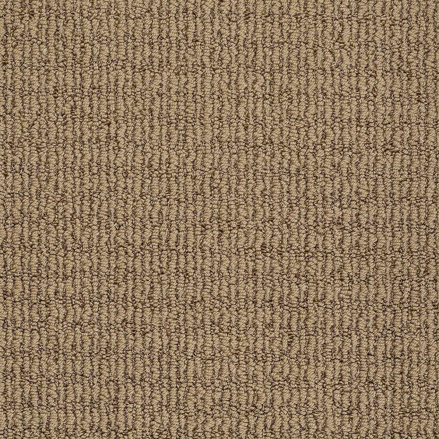 STAINMASTER TruSoft Uneqivocal Willow Bark Berber Indoor Carpet
