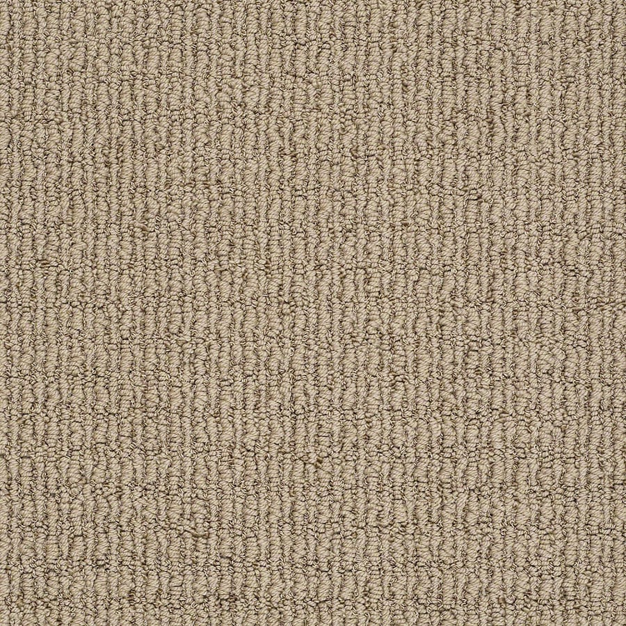 STAINMASTER Trusoft Uneqivocal Rolling Hills Berber/Loop Interior Carpet