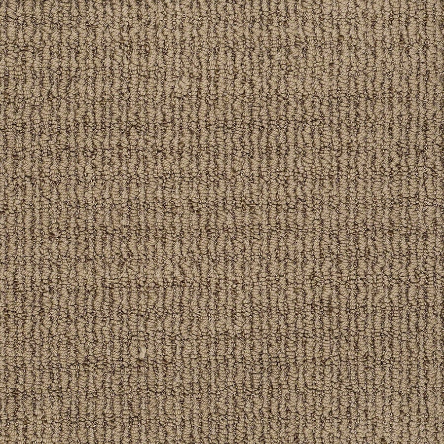 STAINMASTER TruSoft Uneqivocal Serene Brown Berber Indoor Carpet