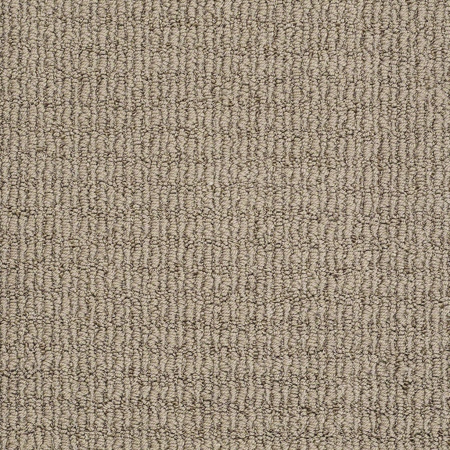 STAINMASTER TruSoft Uneqivocal 12-ft W x Cut-to-Length Shining Taupe Berber/Loop Interior Carpet