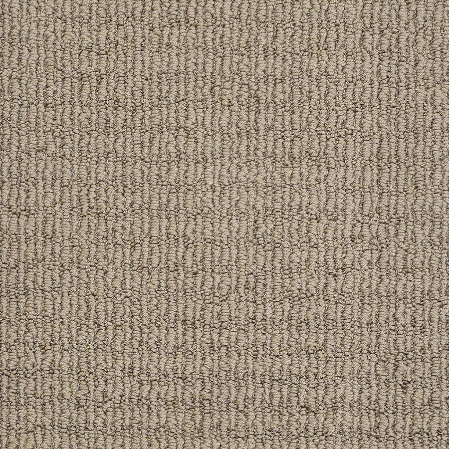 STAINMASTER TruSoft Uneqivocal Shining Taupe Berber/Loop Interior Carpet