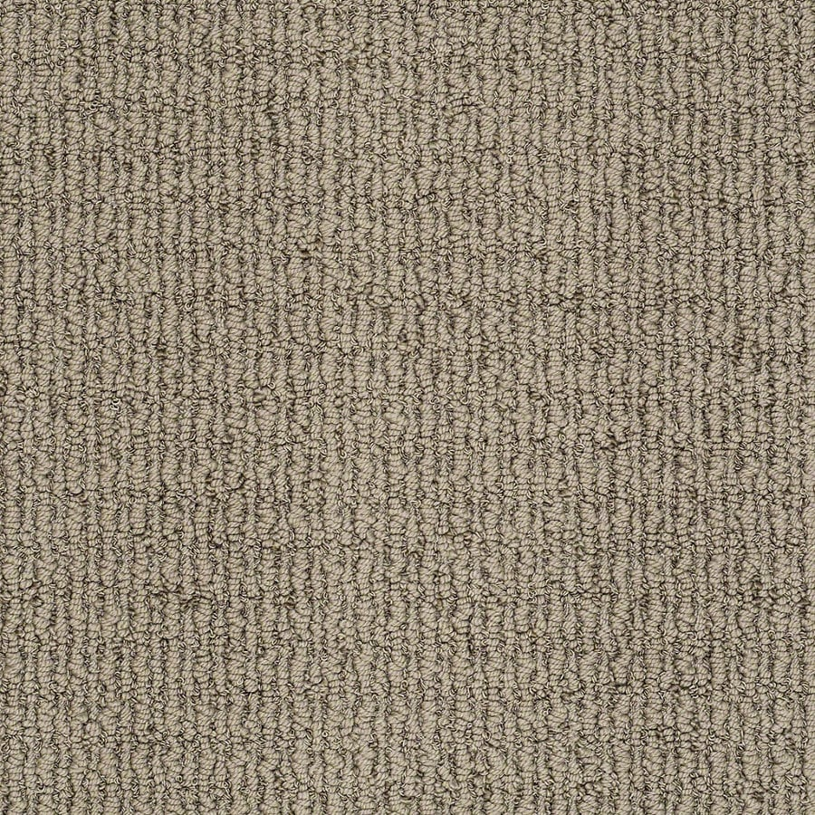 STAINMASTER Trusoft Uneqivocal Shadow Play Berber/Loop Interior Carpet