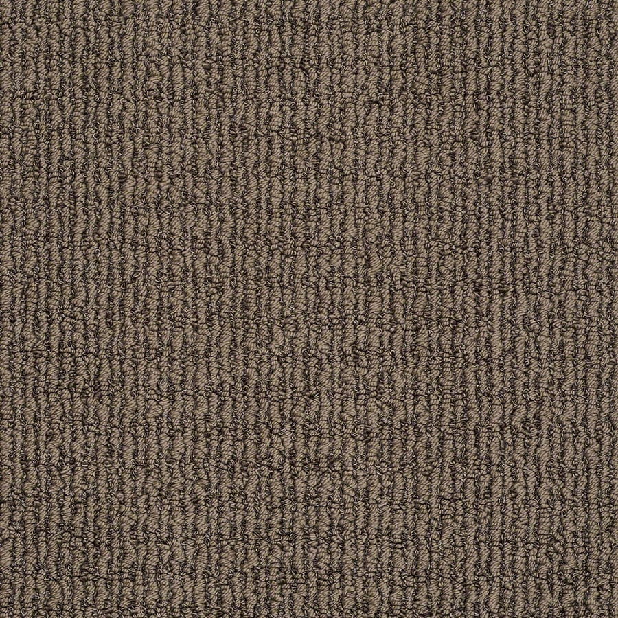 STAINMASTER TruSoft Uneqivocal 12-ft W x Cut-to-Length Dutch Cocoa Berber/Loop Interior Carpet