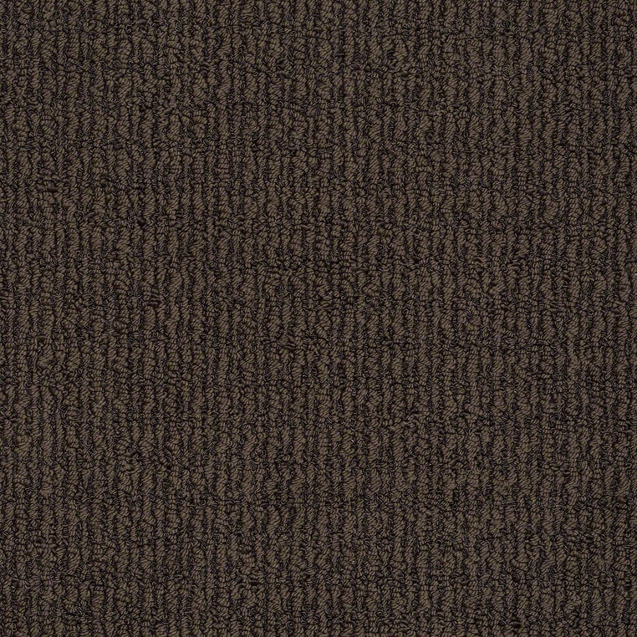 STAINMASTER TruSoft Uneqivocal 12-ft W x Cut-to-Length Root Beer Berber/Loop Interior Carpet