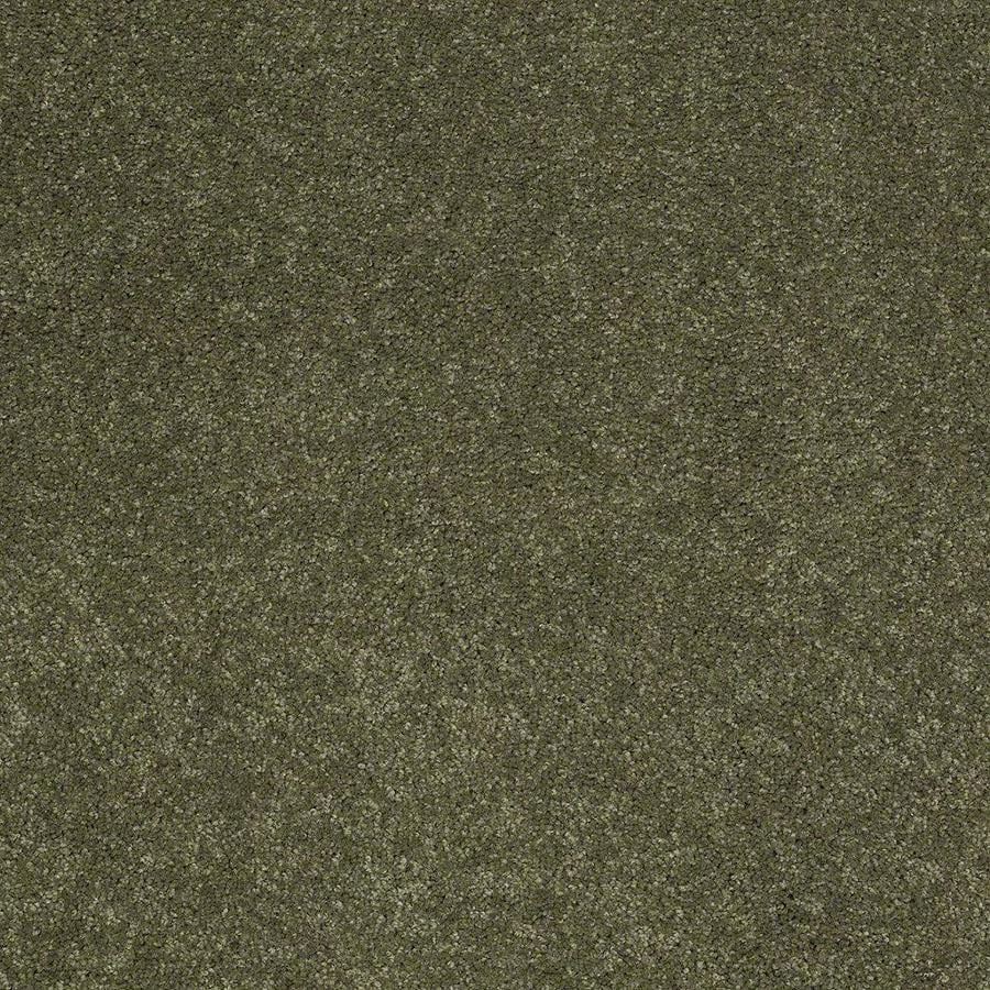 STAINMASTER Active Family Supreme Delight 1 12-ft W x Cut-to-Length New Willow Textured Interior Carpet