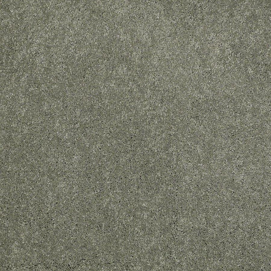 STAINMASTER Active Family Supreme Delight Fresh Dew Textured Interior Carpet