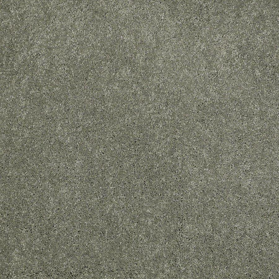 STAINMASTER Active Family Supreme Delight Fresh Dew Textured Indoor Carpet
