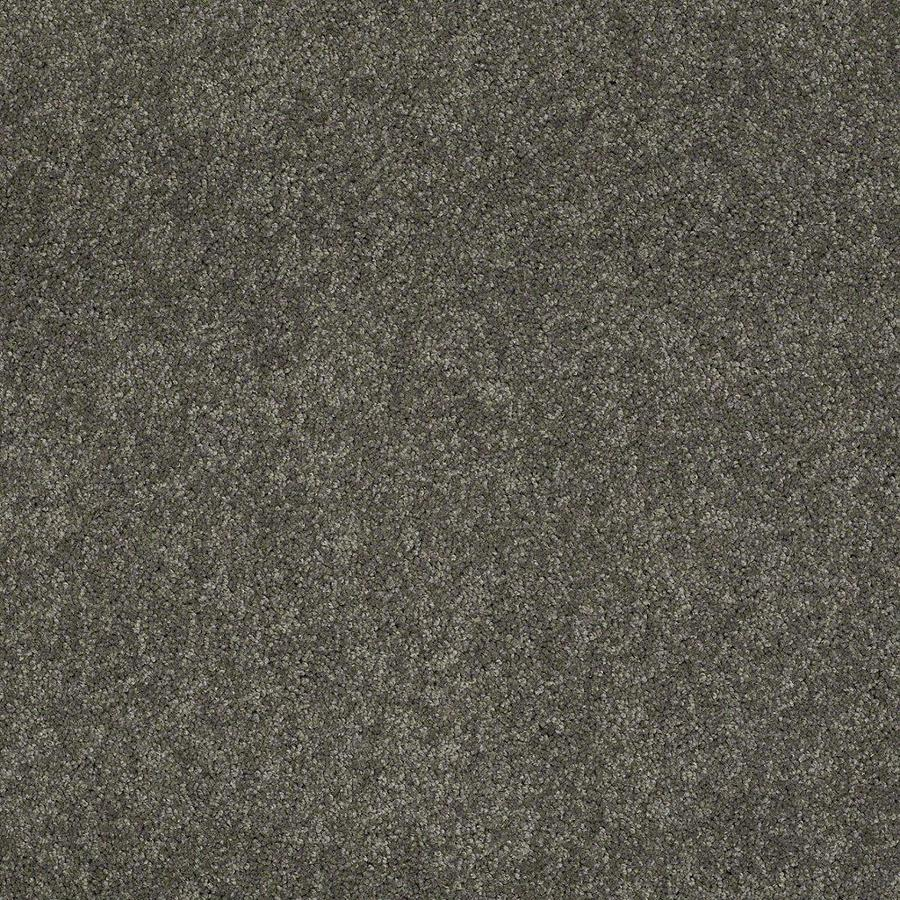 STAINMASTER Active Family Supreme Delight 1 12-ft W x Cut-to-Length Cityscape Textured Interior Carpet