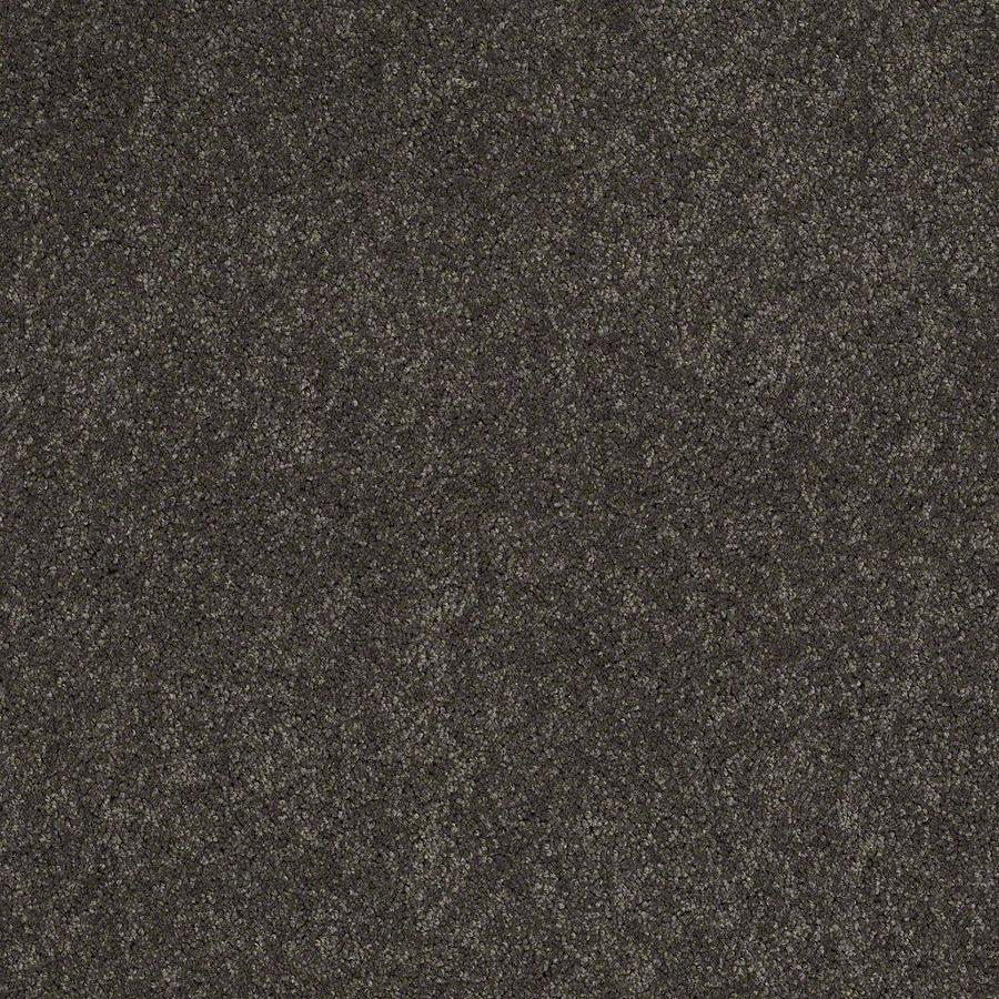 STAINMASTER Active Family Supreme Delight 1 12-ft W x Cut-to-Length Nightfall Textured Interior Carpet