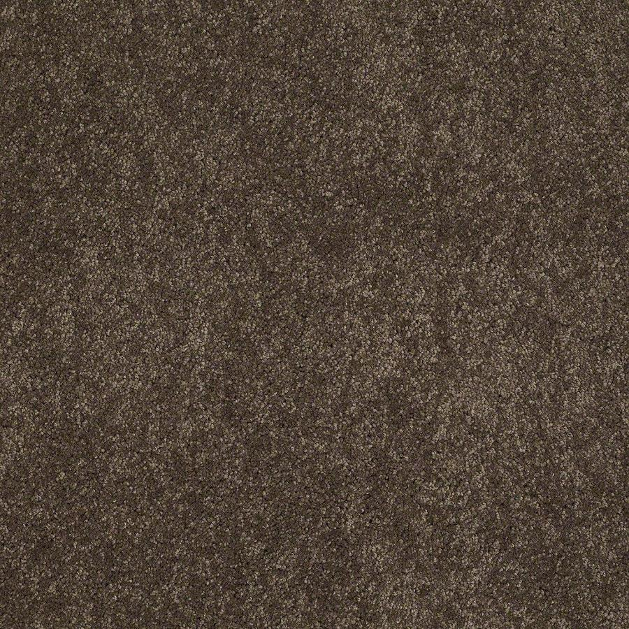 STAINMASTER Active Family Supreme Delight 12-ft W River Rock Textured Interior Carpet
