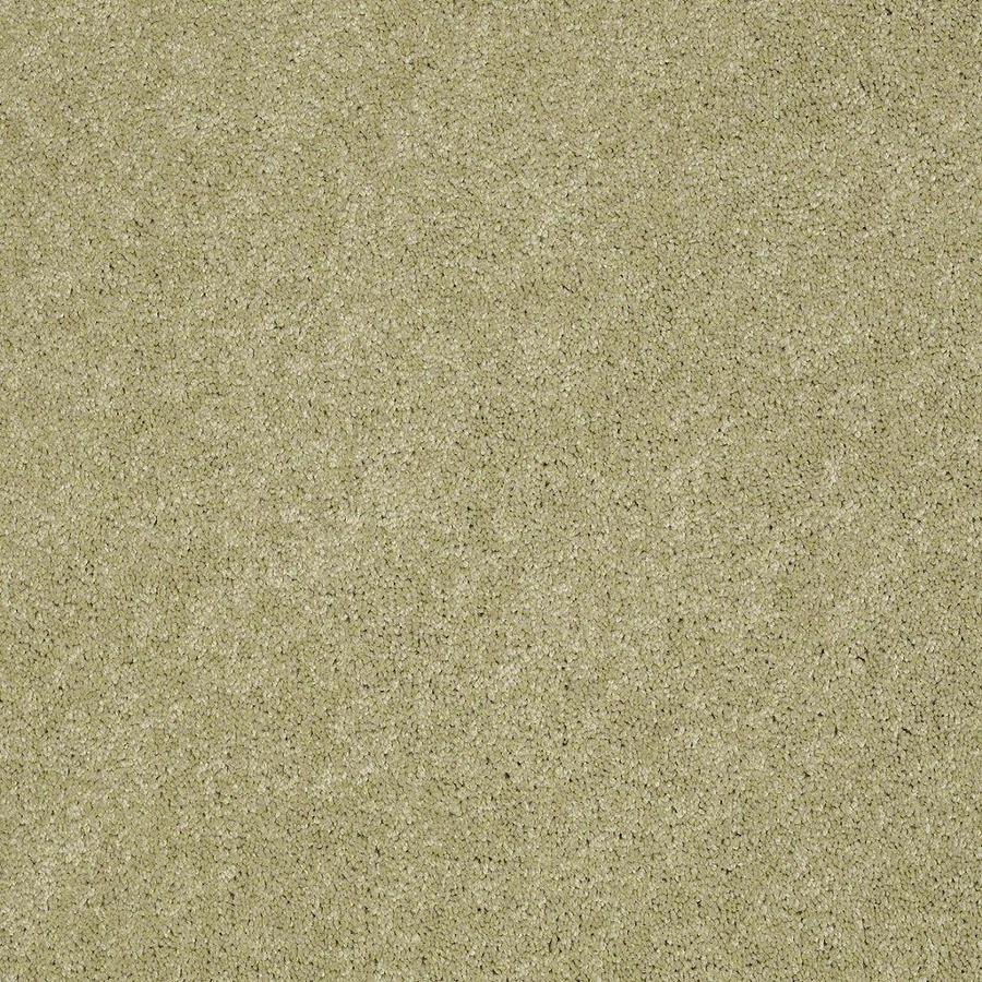 STAINMASTER Active Family Supreme Delight Sprout Textured Indoor Carpet