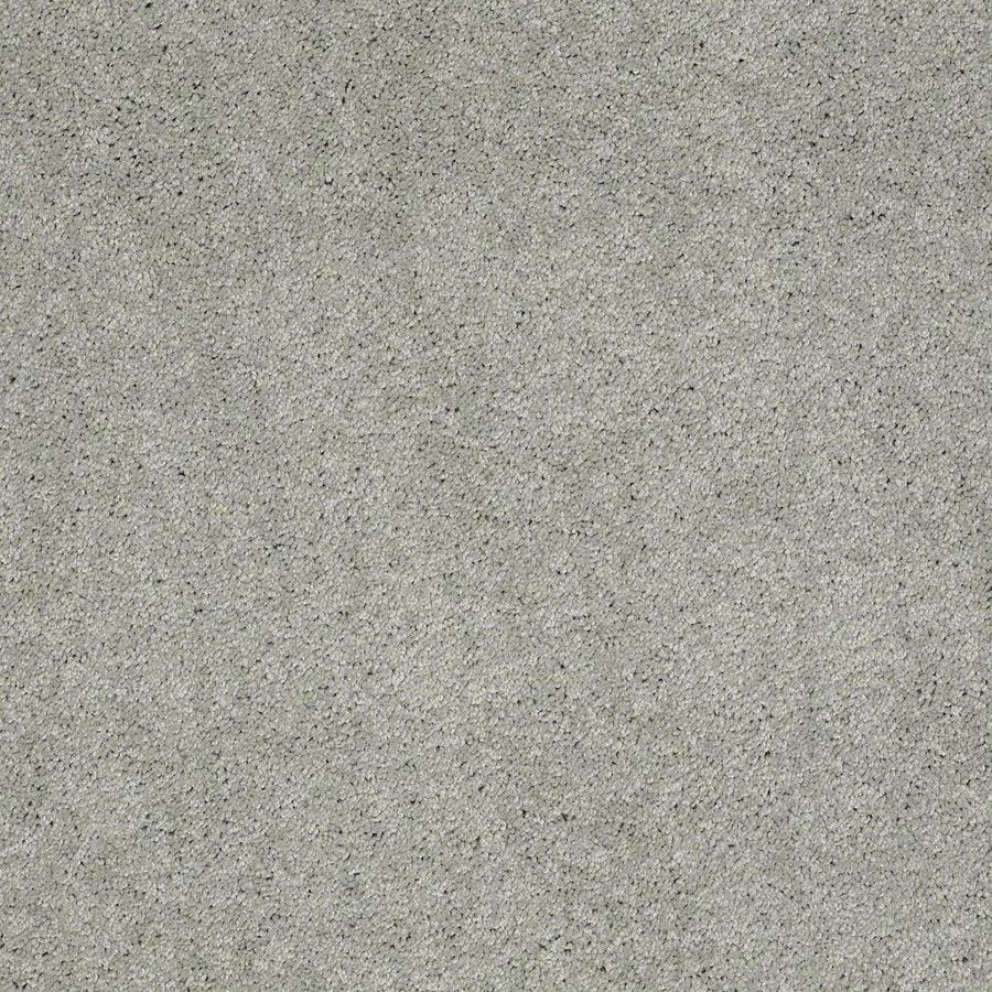 STAINMASTER Active Family Supreme Delight Mystical Textured Interior Carpet