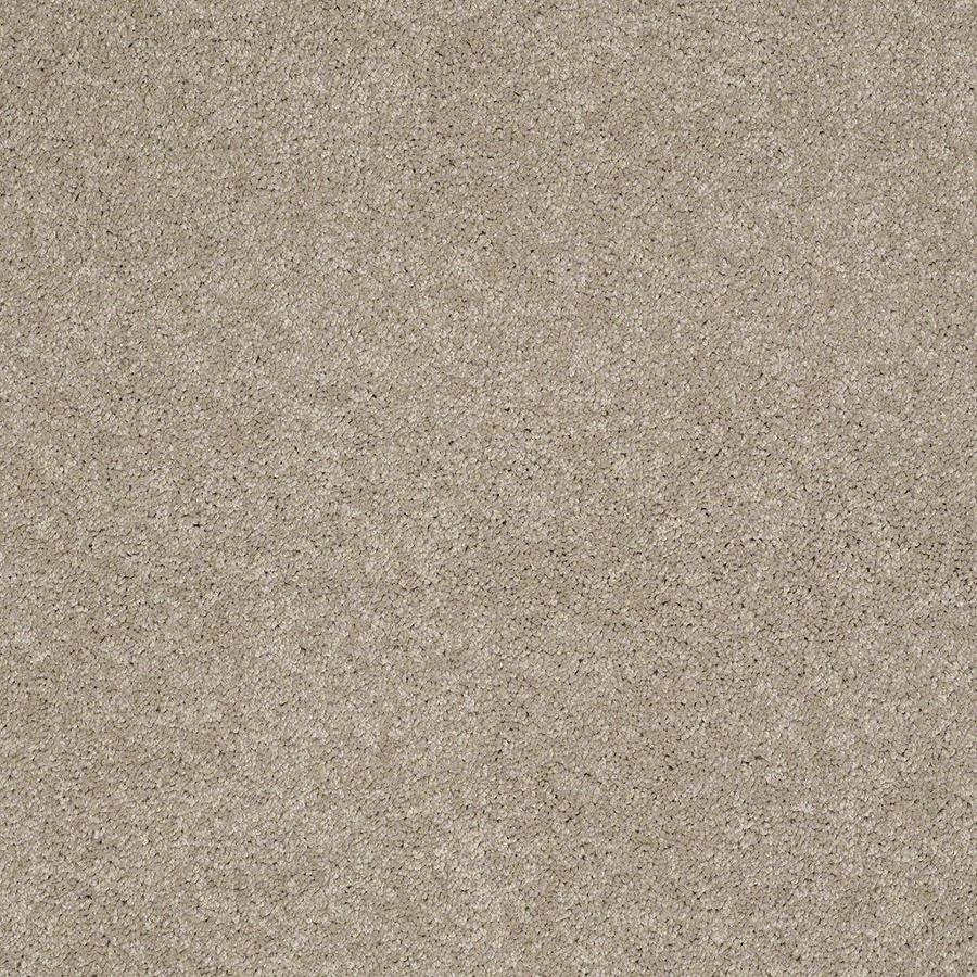 STAINMASTER Active Family Supreme Delight 2 12-ft W x Cut-to-Length Park Avenue Textured Interior Carpet