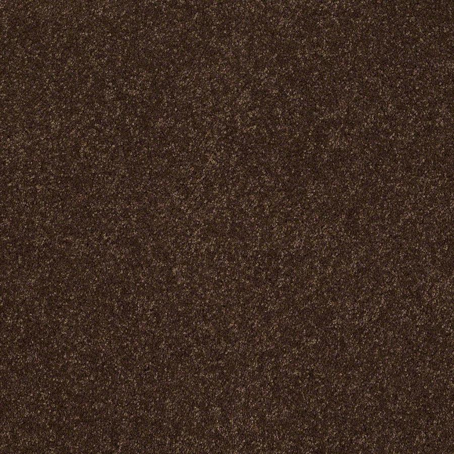 STAINMASTER Active Family Supreme Delight Decaf Textured Indoor Carpet