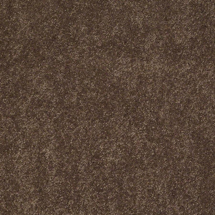 STAINMASTER Active Family Supreme Delight 2 12-ft W x Cut-to-Length Hot Cocoa Textured Interior Carpet