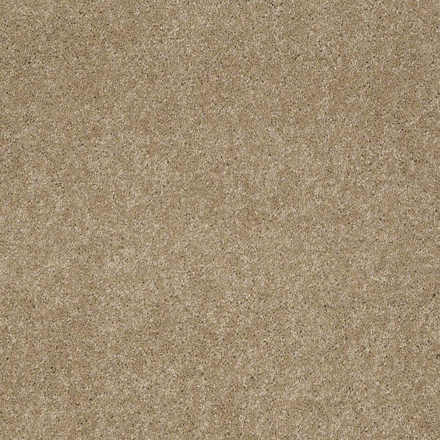 STAINMASTER Active Family Supreme Delight 3 12-ft W x Cut-to-Length Trail Textured Interior Carpet