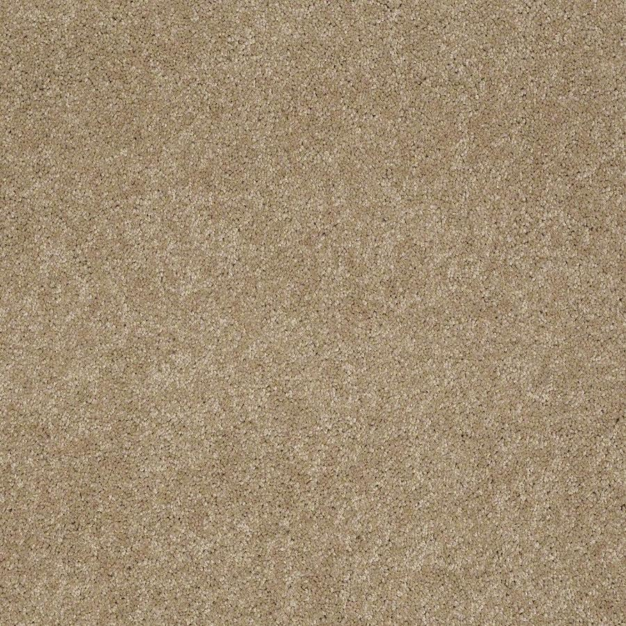 STAINMASTER Active Family Supreme Delight Trail Textured Indoor Carpet