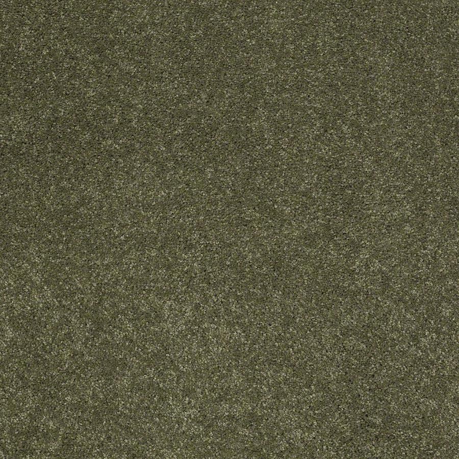 STAINMASTER Active Family Supreme Delight 3 12-ft W x Cut-to-Length New Willow Textured Interior Carpet
