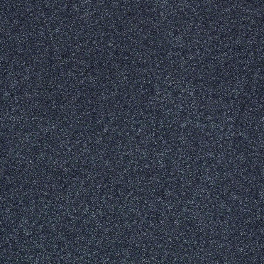 STAINMASTER Active Family Supreme Delight 3 12-ft W x Cut-to-Length Grand Canal Textured Interior Carpet