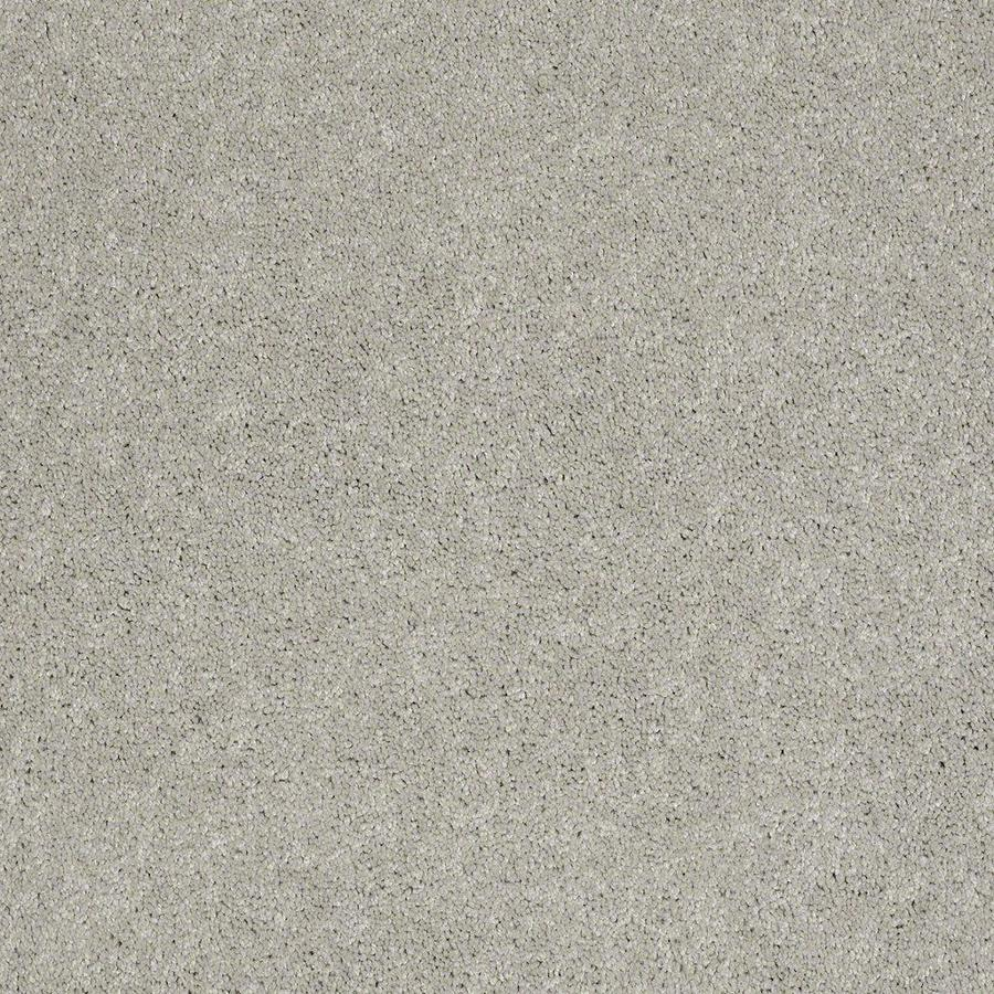 STAINMASTER Active Family Supreme Delight 12-ft W March Winds Textured Interior Carpet