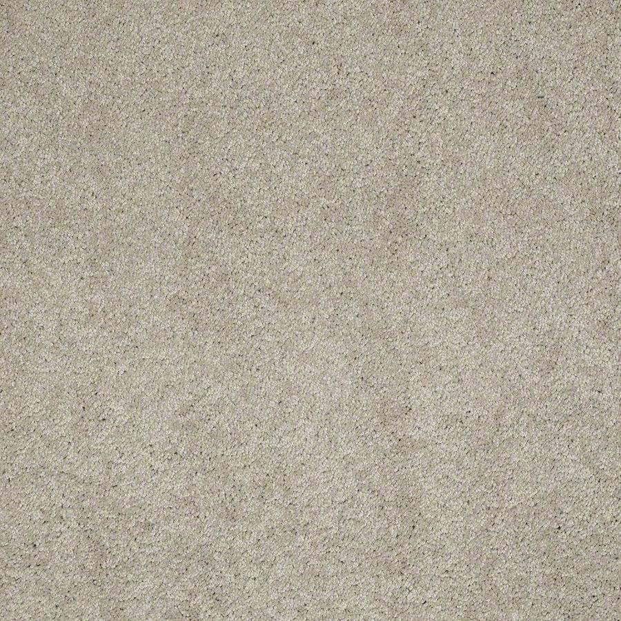 STAINMASTER Active Family Supreme Delight Limestone Textured Interior Carpet
