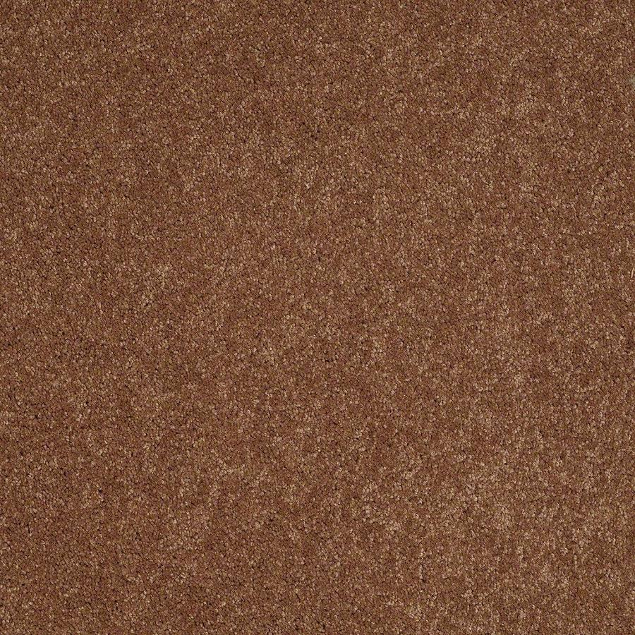 STAINMASTER Active Family Supreme Delight 3 12-ft W x Cut-to-Length Mesa Sunset Textured Interior Carpet