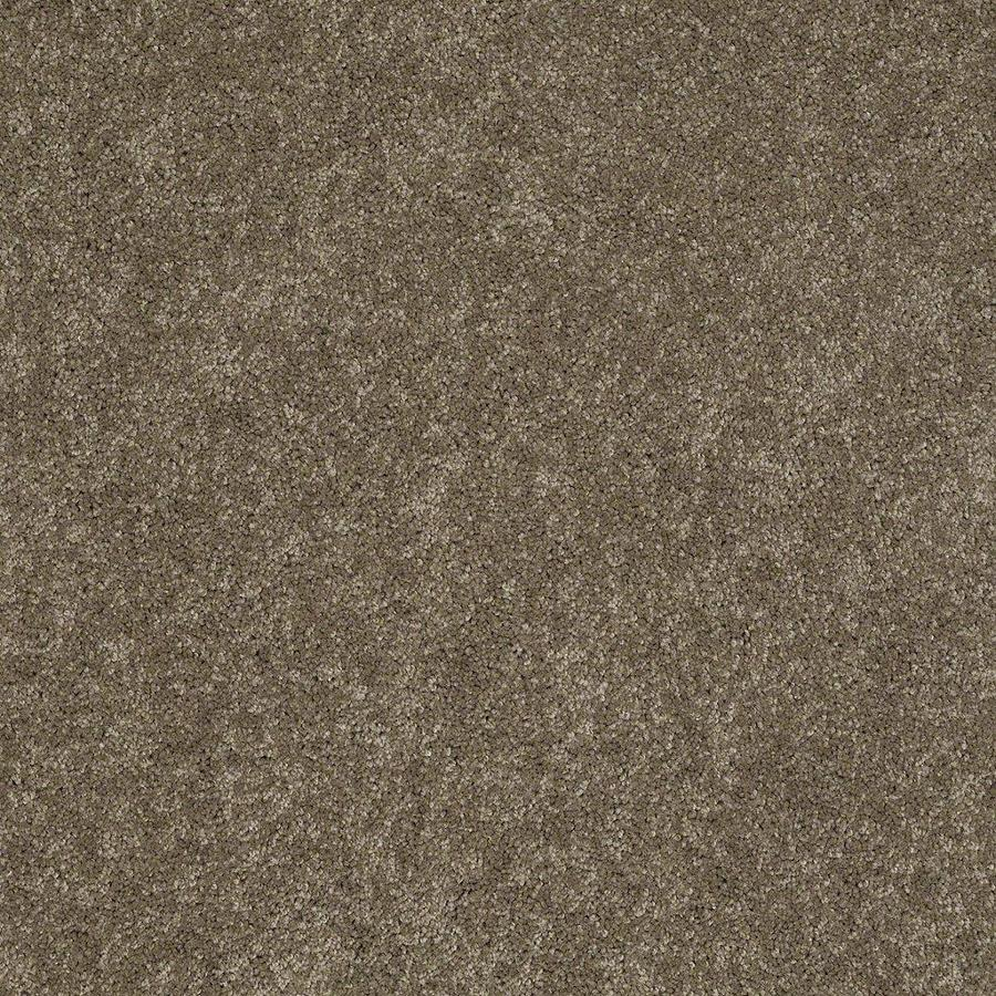 STAINMASTER Active Family Supreme Delight 3 12-ft W x Cut-to-Length Boardwalk Textured Interior Carpet