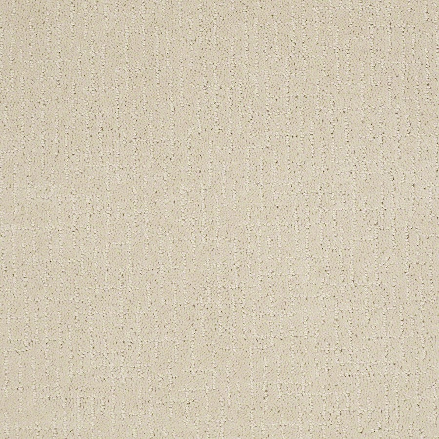 STAINMASTER Active Family Undeniable 12-ft W x Cut-to-Length Macadamia Berber/Loop Interior Carpet