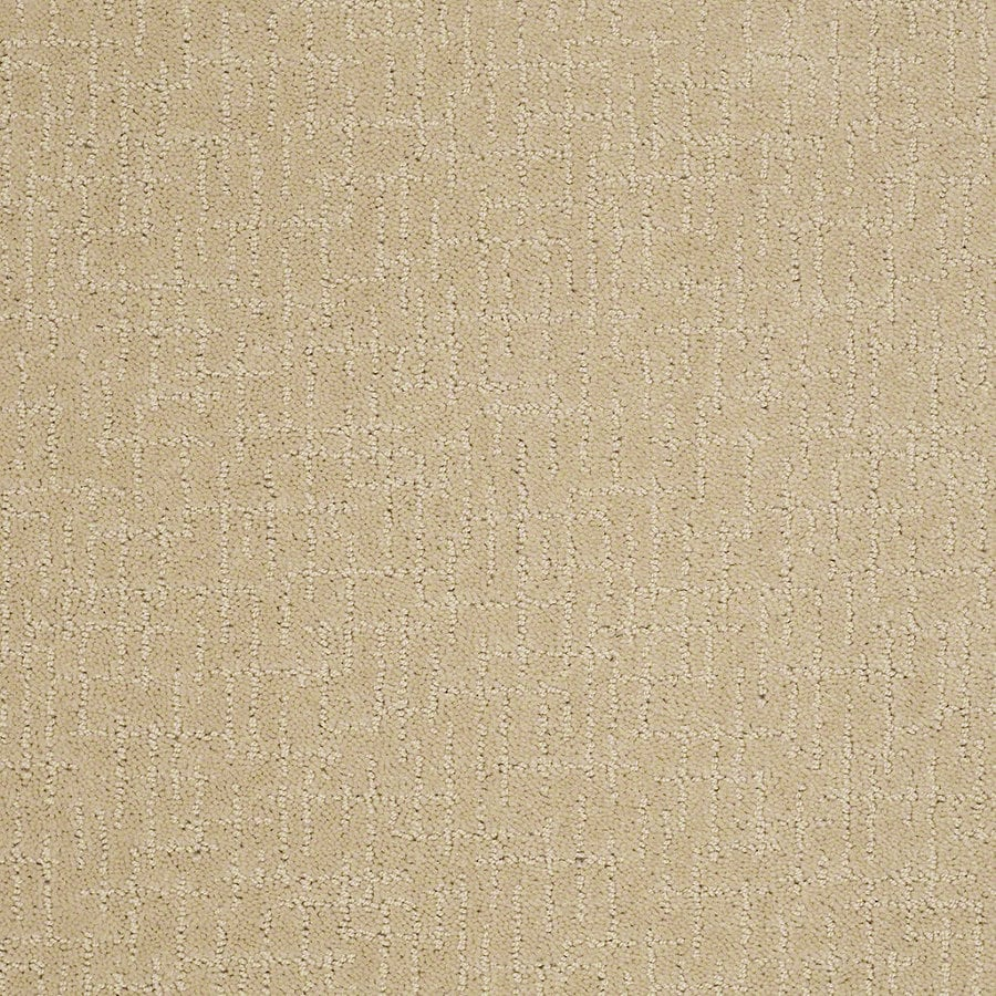 STAINMASTER Active Family Undeniable 12-ft W x Cut-to-Length Chamomile Berber/Loop Interior Carpet
