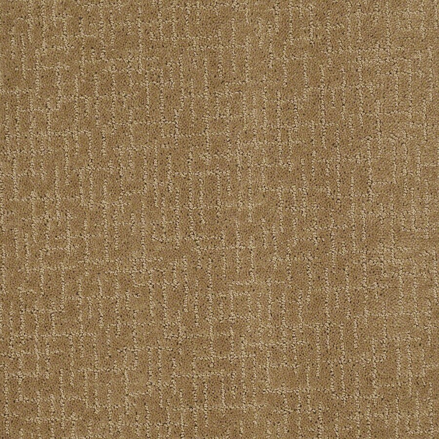 STAINMASTER Active Family Undeniable Starfish Berber/Loop Interior Carpet