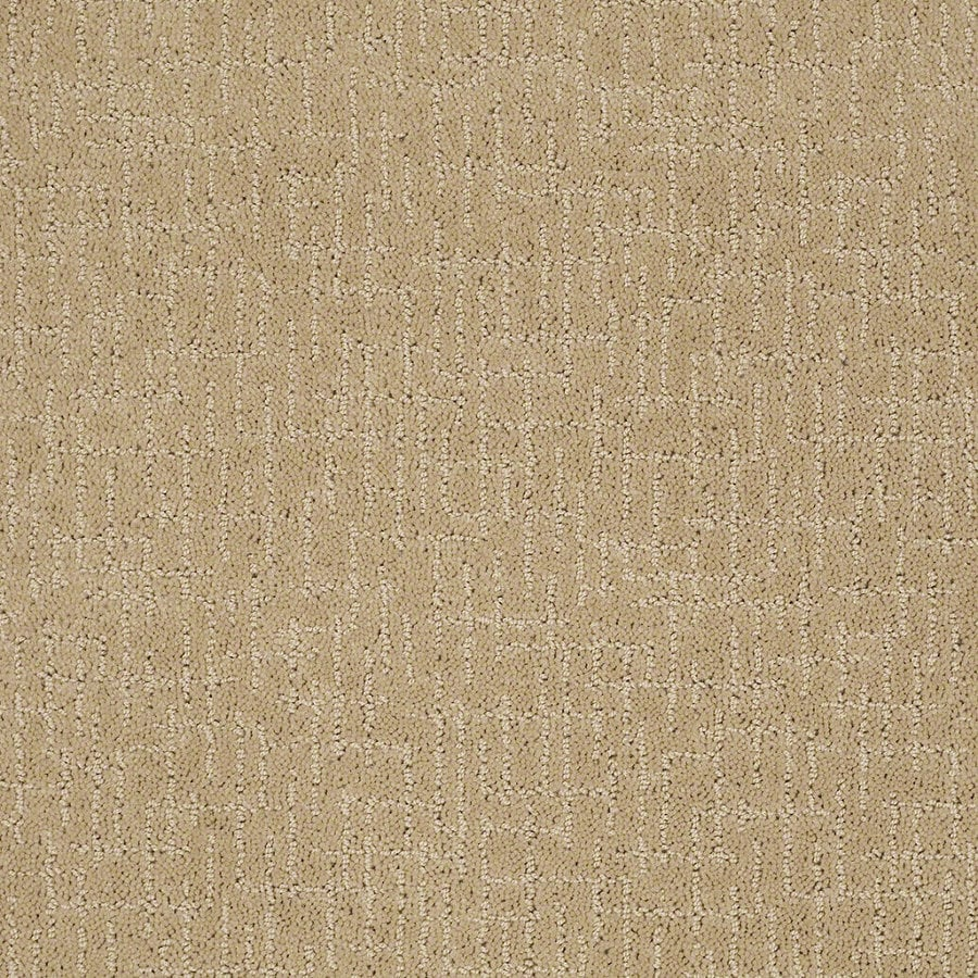 STAINMASTER Active Family Undeniable Golden Fleece Berber/Loop Interior Carpet