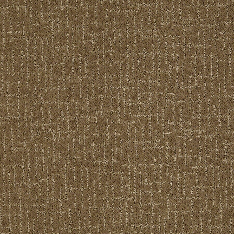 STAINMASTER Active Family Undeniable Medal Bronze Berber/Loop Interior Carpet