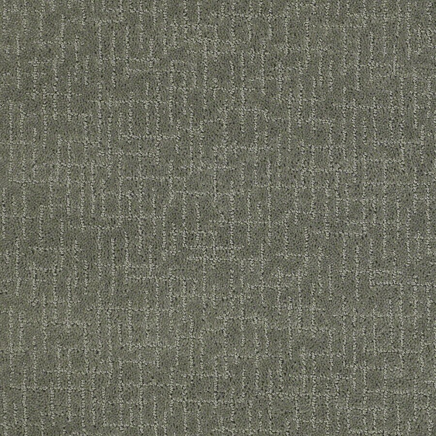 STAINMASTER Active Family Undeniable Agave Green Berber/Loop Interior Carpet