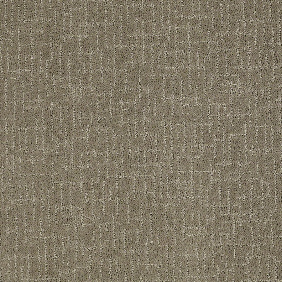 STAINMASTER Active Family Undeniable Greige Berber Indoor Carpet