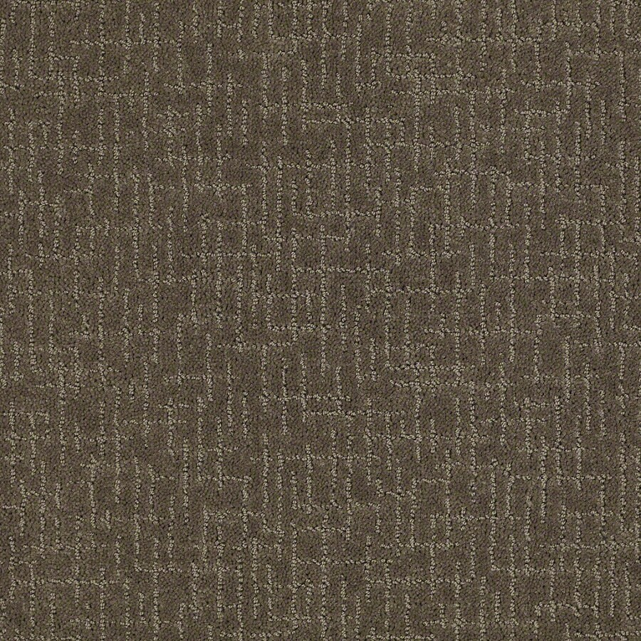 STAINMASTER Active Family Undeniable Oregon Trail Berber/Loop Interior Carpet