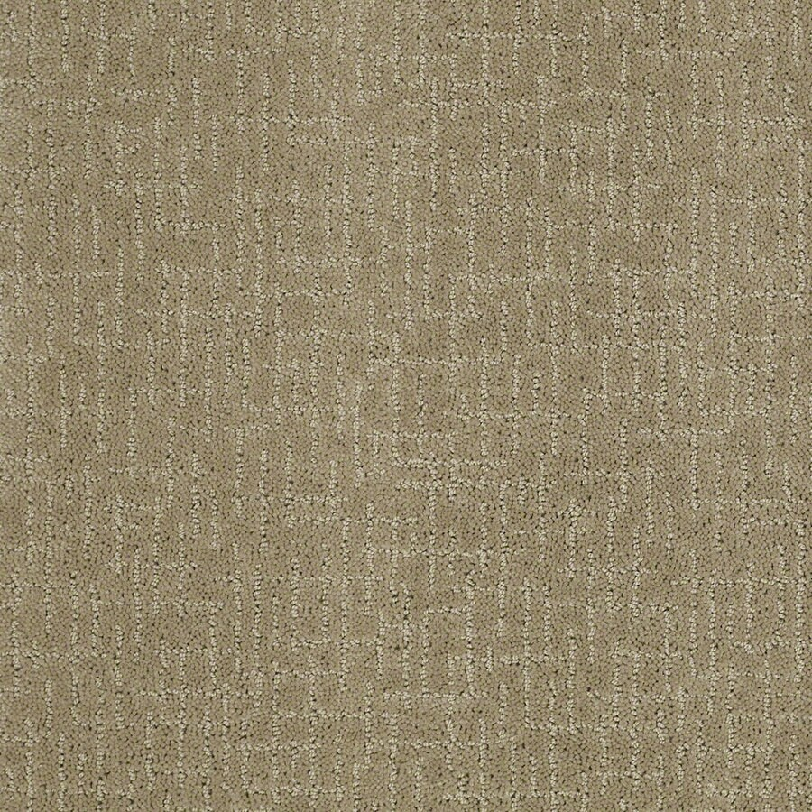 STAINMASTER Active Family Undeniable Fennel Berber Indoor Carpet
