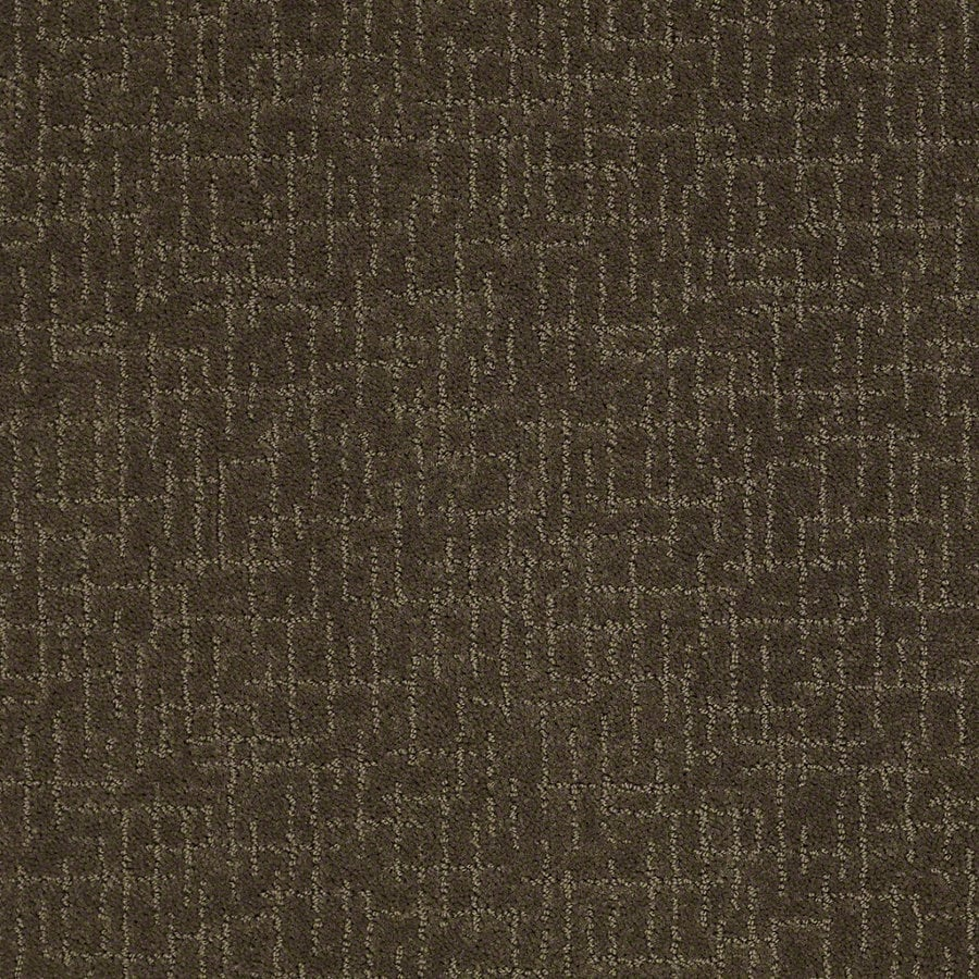 STAINMASTER Active Family Undeniable Shitake Berber/Loop Interior Carpet