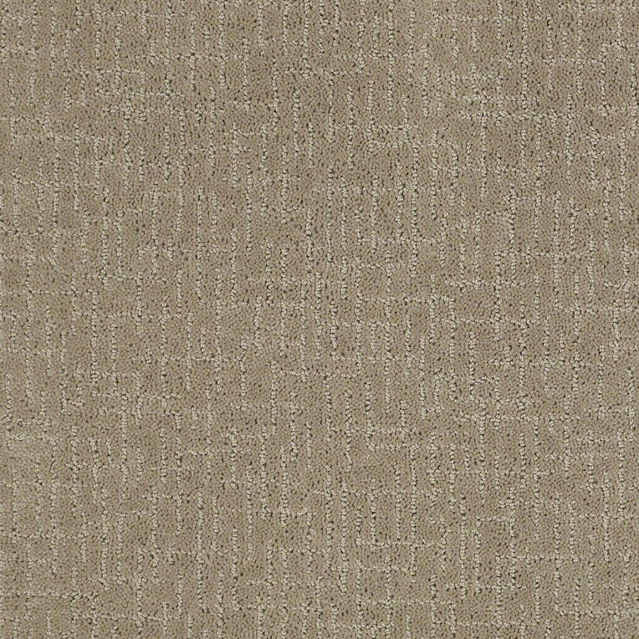 STAINMASTER Active Family Undeniable 12-ft W x Cut-to-Length Hazy Berber/Loop Interior Carpet