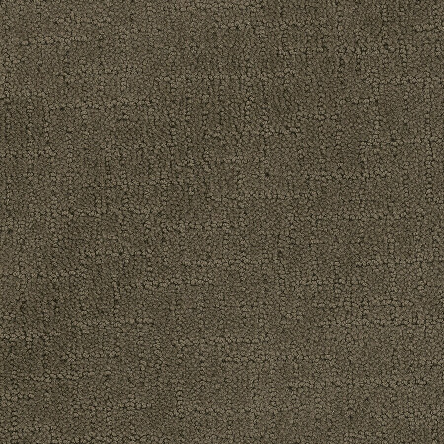 STAINMASTER Active Family Undeniable 12-ft W x Cut-to-Length Timberline Berber/Loop Interior Carpet