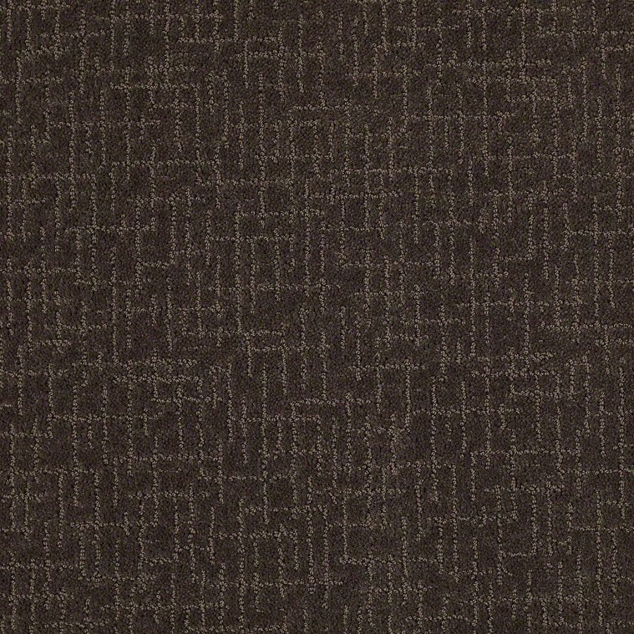 STAINMASTER Active Family Undeniable Dark Earth Berber/Loop Interior Carpet