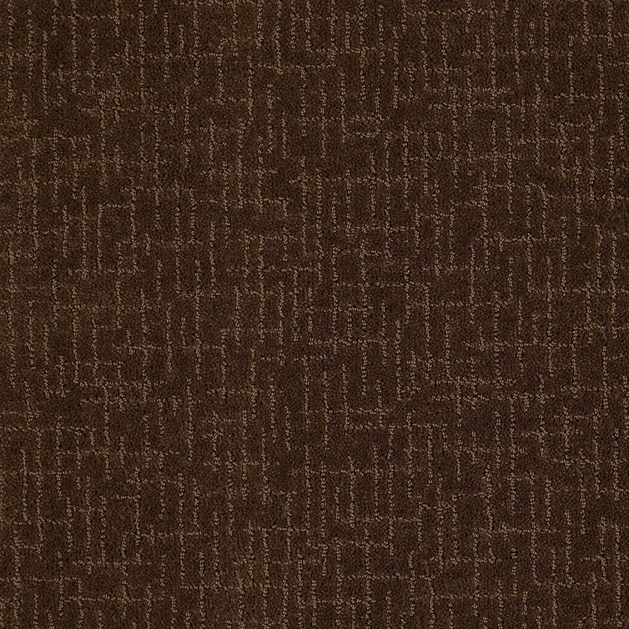 STAINMASTER Active Family Undeniable Nutmeg Berber/Loop Interior Carpet